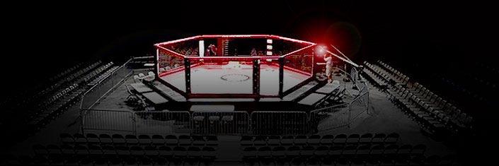 Aamma American Amateur Mixed Martial Arts